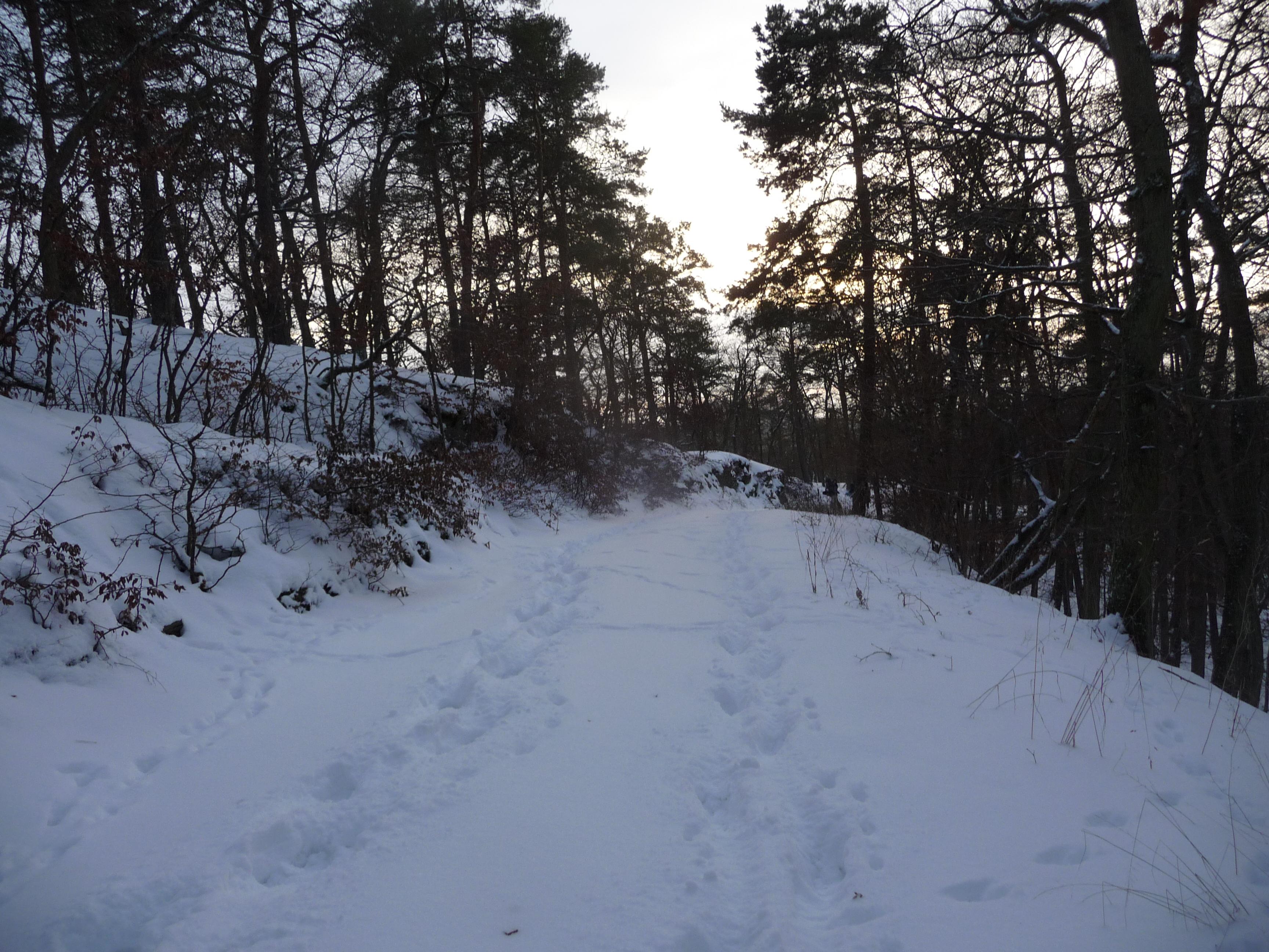 Schneekothenfahrt 2010