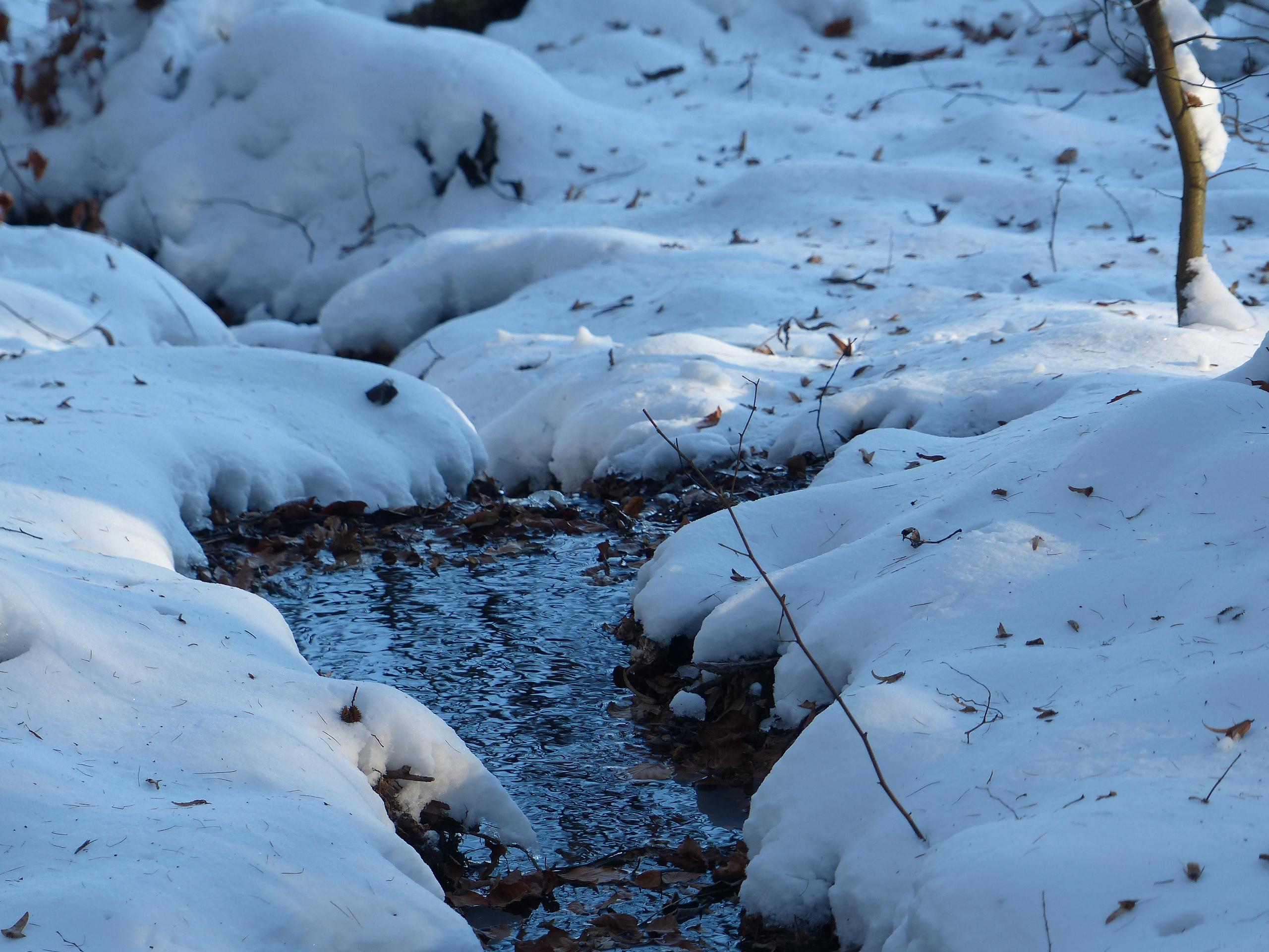 Schneekohtenfahrt 2014 (34)