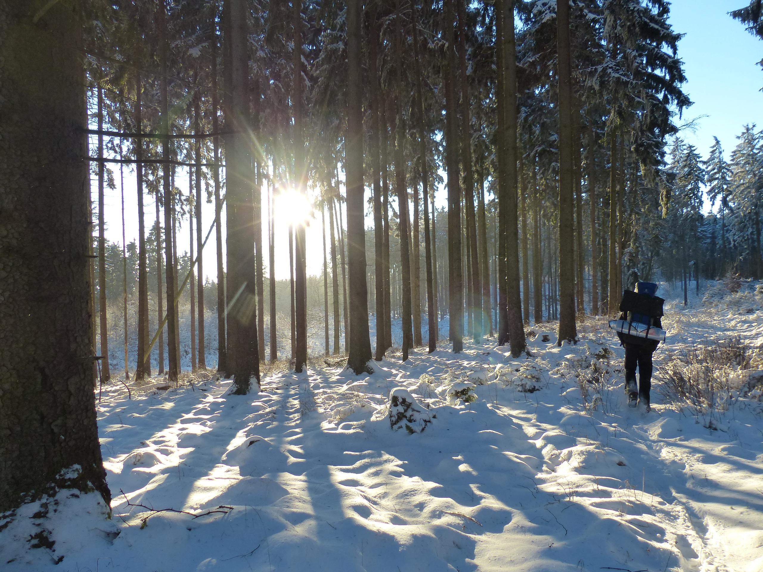 Schneekohtenfahrt 2014 (4)