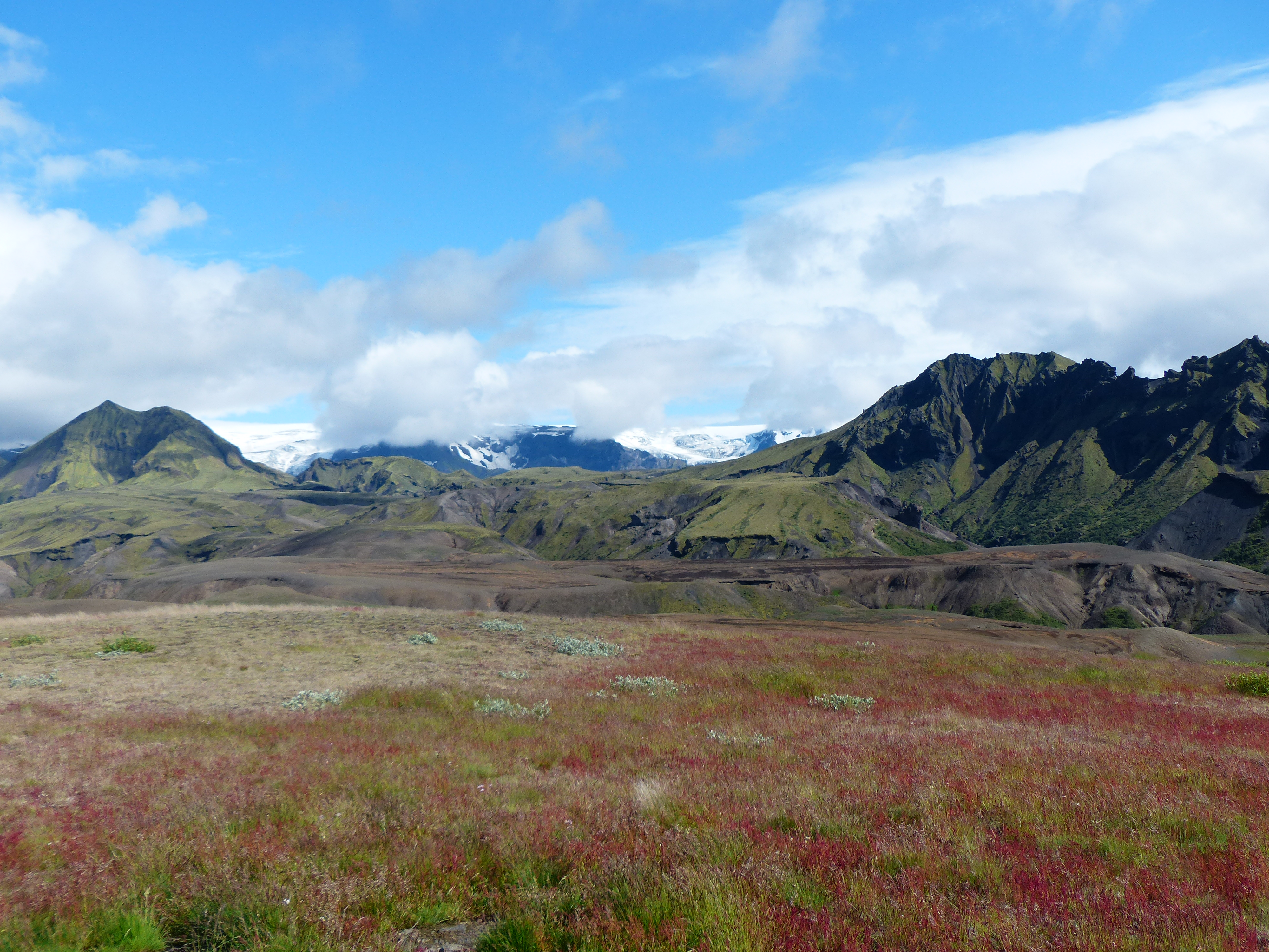 Island 2013 (15)