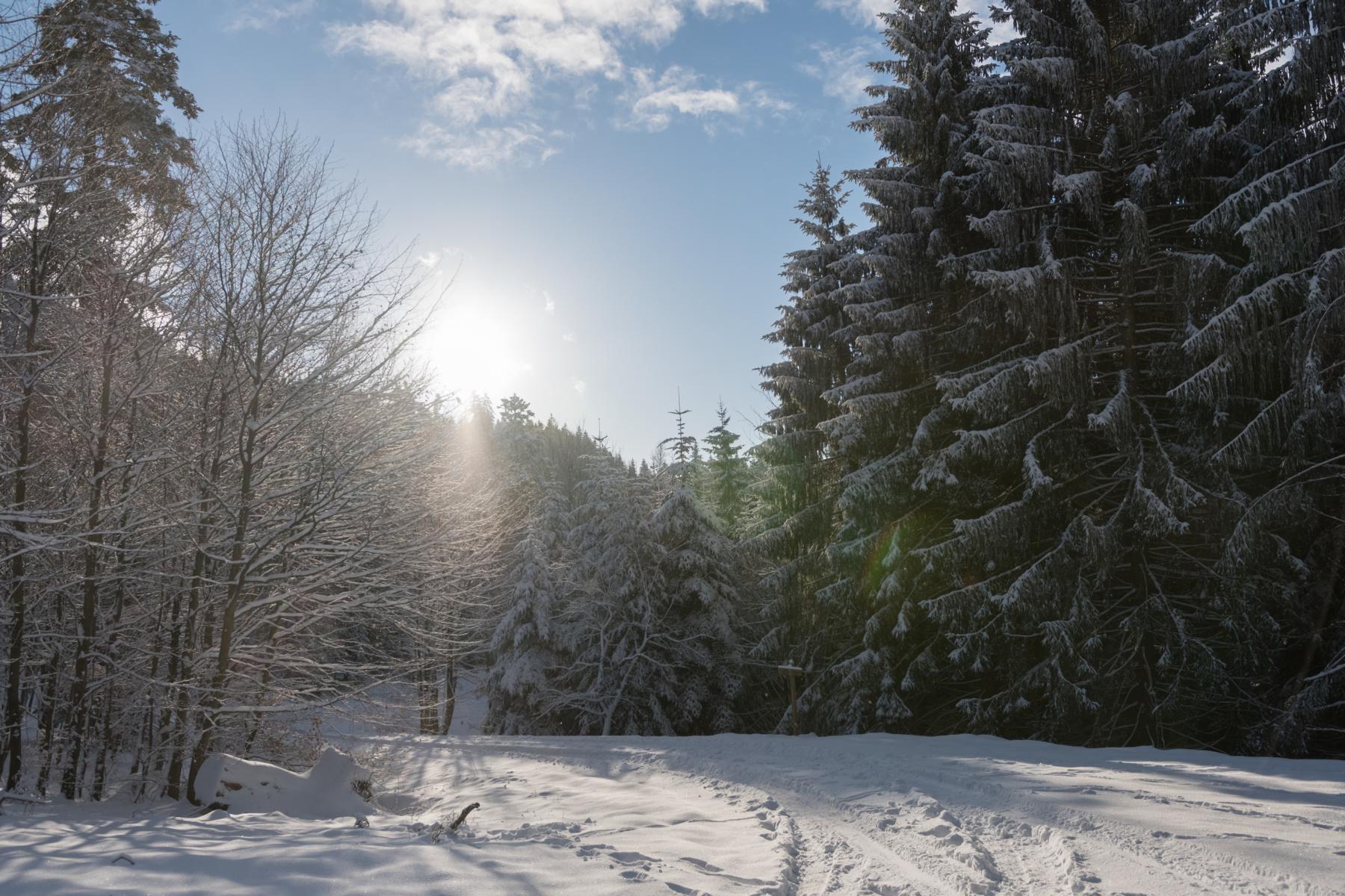 Schneekohtenfahrt (36)